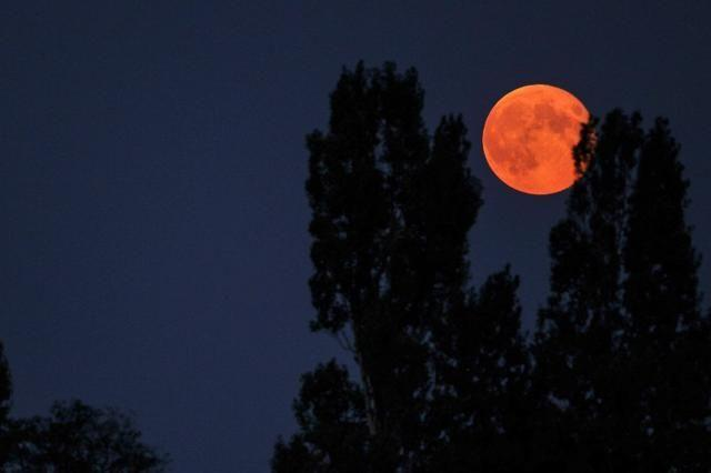 Double spectacle: Rare show of 'super blood moon' for skygazers