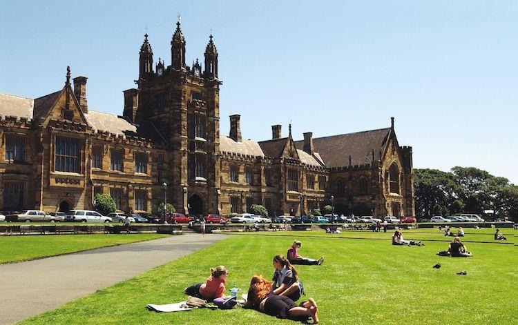 NSW : Better Experience For Overseas Students