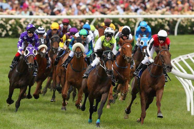 Melbourne Cup Facts And Statistics