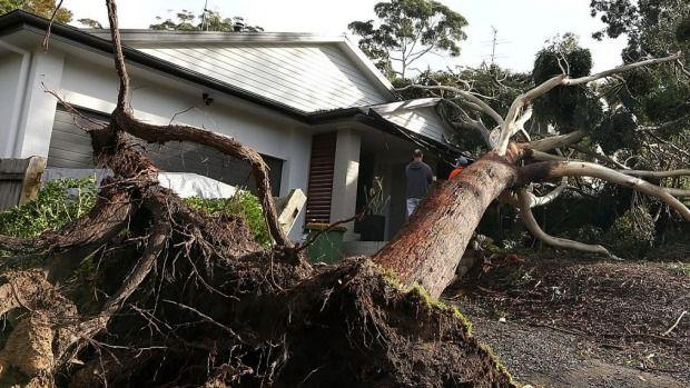 Storm Damage Warning For NSW
