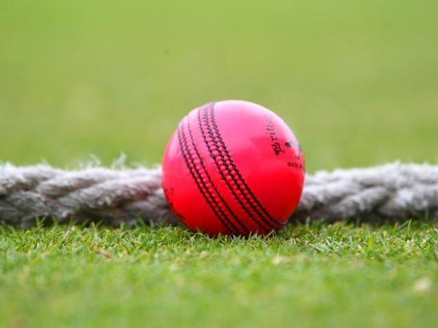Ganguly, Jones, Laxman believe the pink ball is here to stay