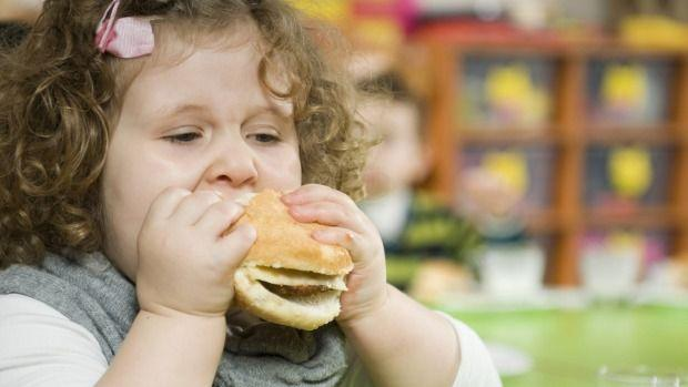 Obese fathers pass on metabolic disease to children, Sydney scientists warn