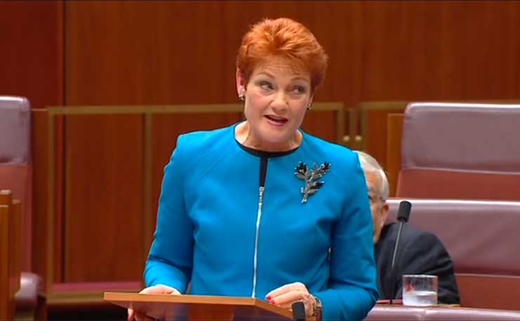 Pauline Hanson's Divisive Speech Sparks off Reactions