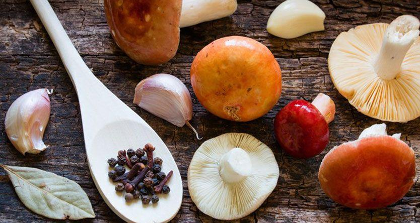 Mushrooms may help delay or prevent dementia, Alzheimer's