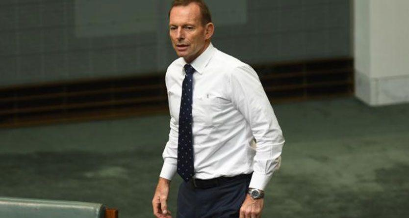 Tony Abbott suggests he will run at the next election