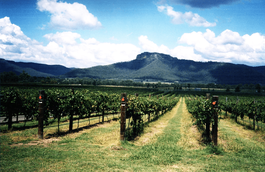 A Weekend In Hunter Valley