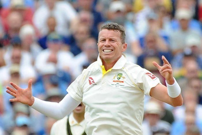Peter Siddle shock option for Boxing Day Test as Josh Hazlewood's replacement
