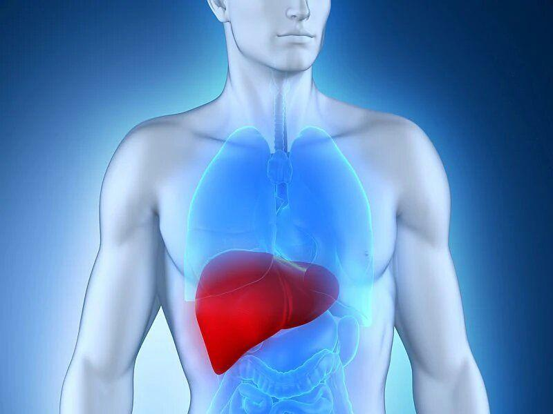 Guidelines detail management of liver failure in ICU patients