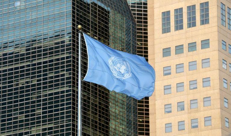 Despite pandemic disruptions, UN carries on -- by videoconference