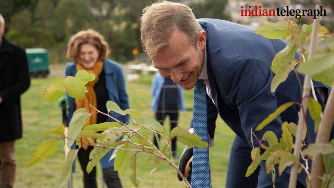 New trees planted in Greater Sydney's parks: Rob Stokes