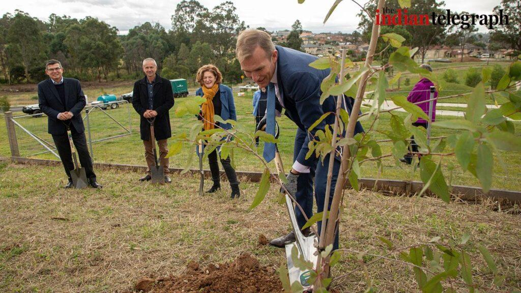 new trees planted in Greater Sydney's parks