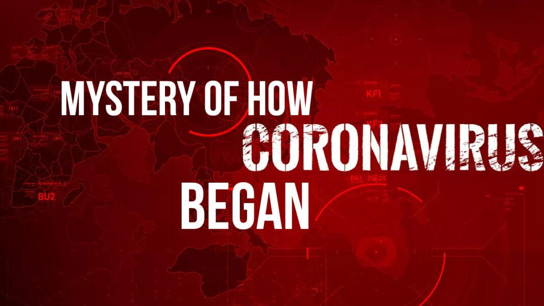 mystery of how Covid began
